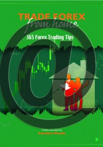 365 Expert Forex Trading Tips Sent Daily Via Email For A Year $97